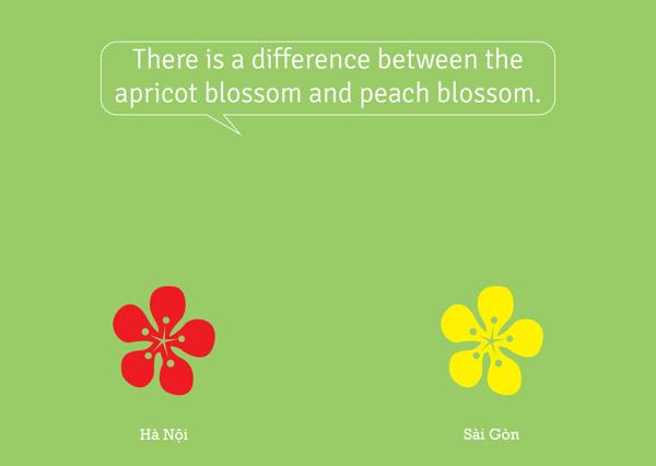Có sự khác biệt giữa hoa đào và hoa mai.
