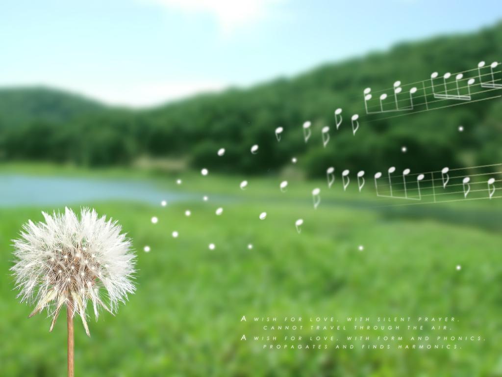 """...Những cánh bông thơ trắng ngọt ngào"""""""