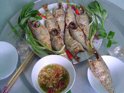 Cá mòi...Nguồn: thanhnien.com.vn