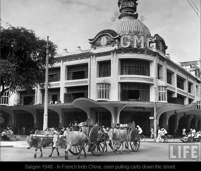 Bò kéo xe qua đường Charner, Saigon 1948. Nguồn: LIFE