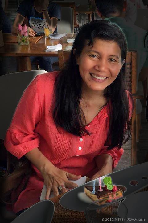 Nguyễn Thị Phương Thảo 2015, nguofi hoạt đọng xã hội. Nguồn: NTPT/DCVOnline