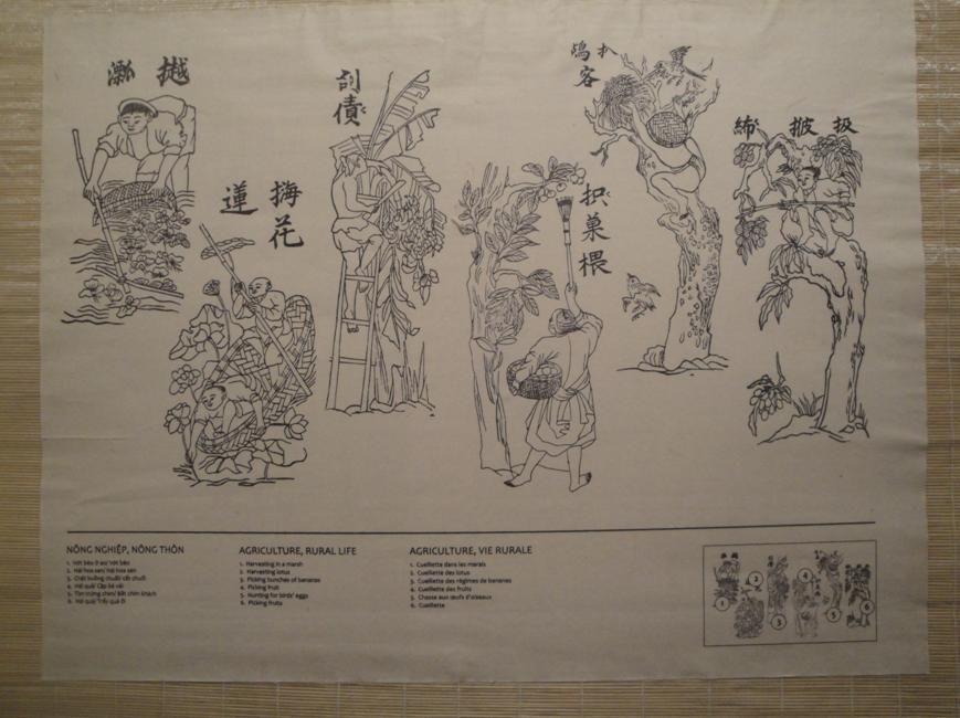 Tranh mộc bản của Henri Oger . Nếu không có chữ dùng mẫu tự La ting tì ngày nay mấy người Việt Nam hiểu được?. NÔNG NGHIỆP, NÔNG THÔN  Từ trái qua phải:  1. Vớt bèo ở ao / (Chú thích chữ Hán-Nôm: Vớt bèo)  2. Hái sen / (Chú thích chữ Hán-Nôm: Hái hoa sen)  3. Chặt buồng chuối / (Chú thích chữ Hán-Nôm: Cắt chuối)  4. Hái vải / (Chú thích chữ Hán-Nôm: Cặp bẻ vải)  5. Tìm trứng chim / (Chú thích chữ Hán-Nôm: Bắt chim khách)  6. Hái ổi / (Chú thích chữ Hán-Nôm: Trẩy quả ổi)
