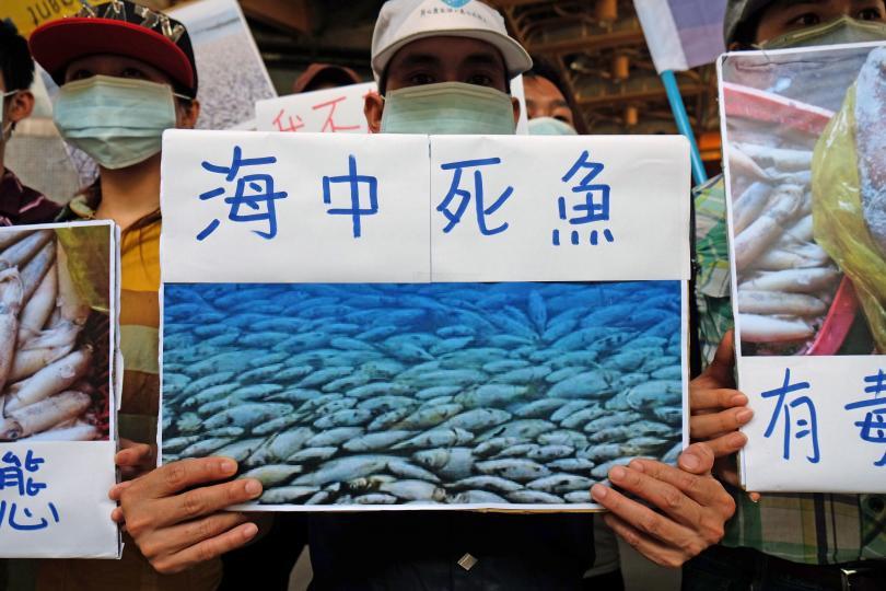 """Trong một cuộc biểu tình ở Đài Bắc, 18 Tháng Sáu 2016, một người Việt Nam sống ở Đài Loan cầm bảng viết """"cá chết trên biển""""  và hình ảnh cá chết. Nhóm người biểu tình tuyên bố cá chết vì nước thải công nghiệp của tập đoàn Formosa của Đài Loan. Nguồn: GETTY IMAGES / SAM YEH / AFP"""